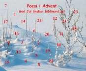 Snölandskap med kalenderluckor  1-24