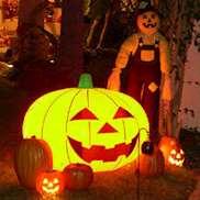 Brinnande Halloweenpumpor i trädgård.
