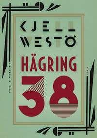 """Omslagsbild till boken """"Hägring 38""""."""