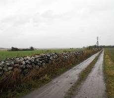 En ödslig grusväg i ett landskap.