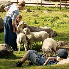 Emil i Lönneberga med ett får. Foto: Mr Jan, Flickr.