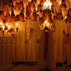 Luciafölje som sjunger. Foto: Claudia Gründer, Wikimedia Commons