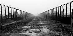 Taggtrådsstängsel och baracker i koncentrationslägret Auschwirz
